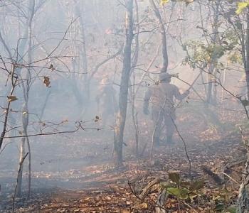 Incêndio atinge área verde e Águas da Prata fica em alerta – O Município